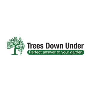 trees down under 1 300x300